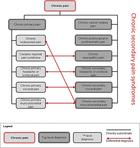 A New Classification of Chronic Pain for Better Patient Care